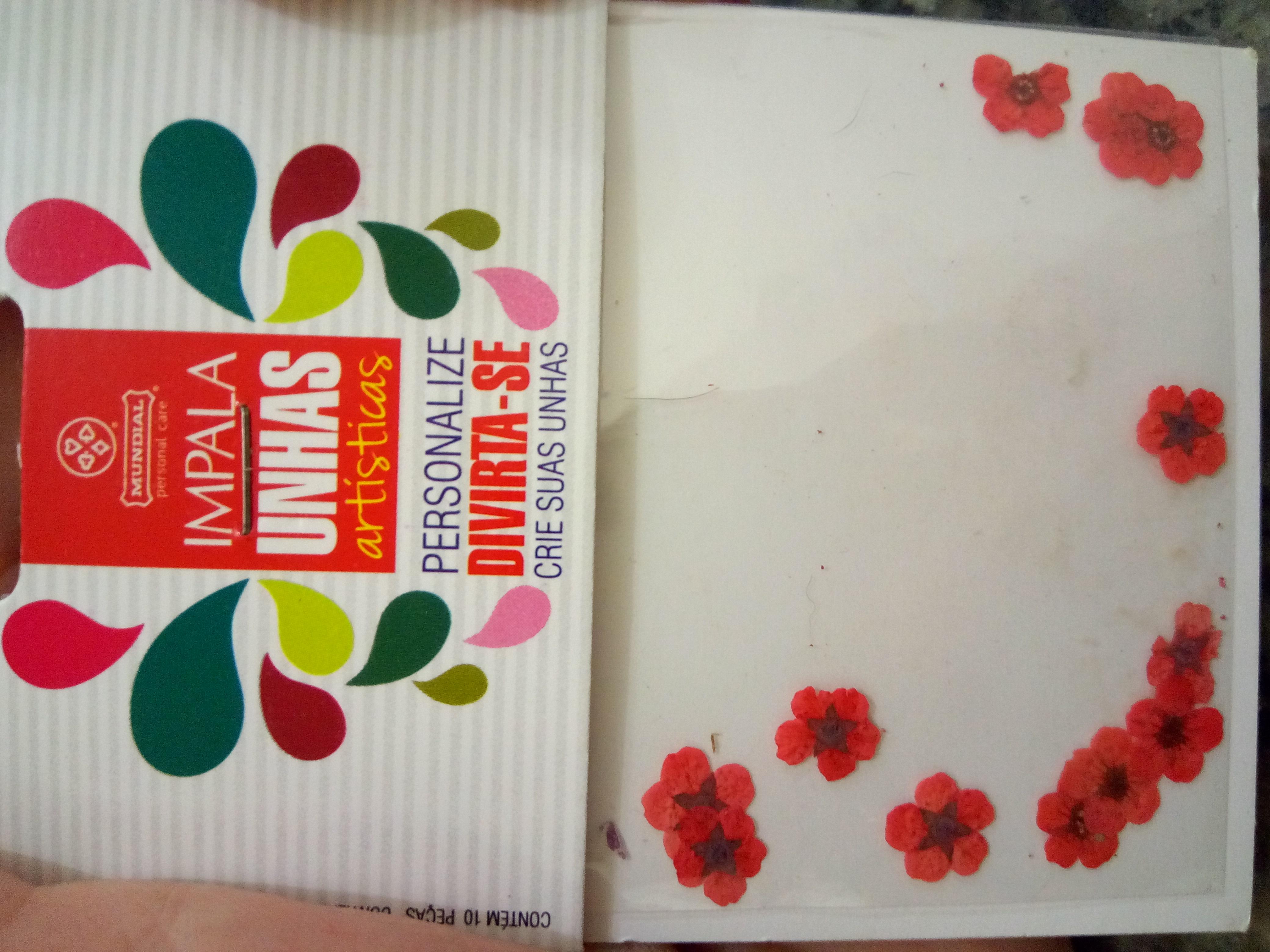 unhas_flores_impala